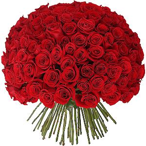 Доставка цветов в астрахани на дом доставка цветов рябина